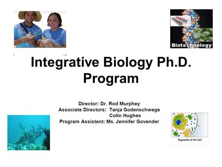 Integrative Biology Ph.D. Program Director: Dr. Rod Murphey Associate Directors: Tanja Godenschwege Colin Hughes Program Assistant: Ms. Jennifer Govender.