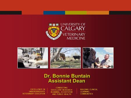 EXCELLENCE IN UNDERGRADUATE VETERINARY EDUCATION CONDUCTING EXCELLENT RESEARCH IN ANIMAL, ECOSYSTEM AND PUBLIC HEALTH BUILDING CLINICAL LEARNING COMMUNITIES.