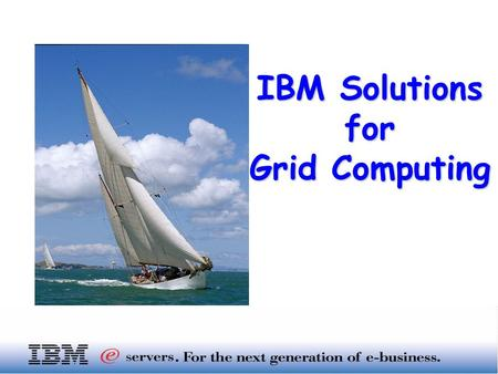 "IBM Solutions for Grid Computing. I. IT view on ""GRID"" II. IBM and GRID III. IBM Storage and GRID Index …"