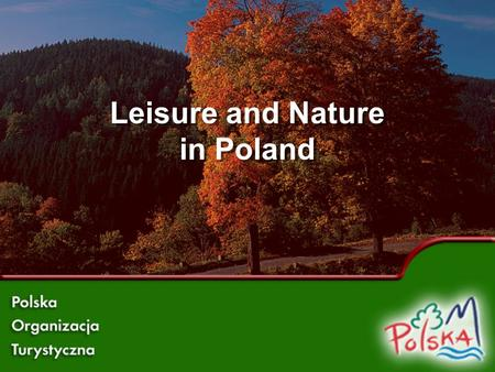 Leisure and Nature in Poland.  Nature in Poland is preserved in its original state.  Forests cover 29% of the country. Forests in Poland.