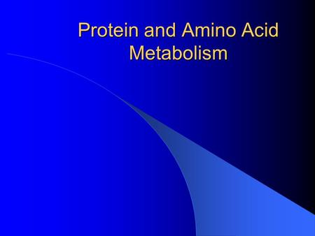 Protein and Amino Acid Metabolism