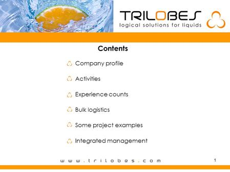 1 Contents Company profile Activities Experience counts Bulk logistics Some project examples Integrated management.