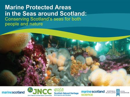 Marine Protected Areas in Scotland's Seas Ecological data workshop David Mallon Marine Environment Branch Marine Scotland.