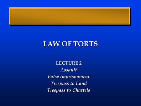 LAW OF TORTS LECTURE 2 Assault False Imprisonment Trespass to Land