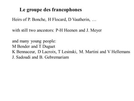 Le groupe des francophones Heirs of P. Bonche, H Flocard, D Vautherin, … with still two ancestors: P-H Heenen and J. Meyer and many young people: M Bender.