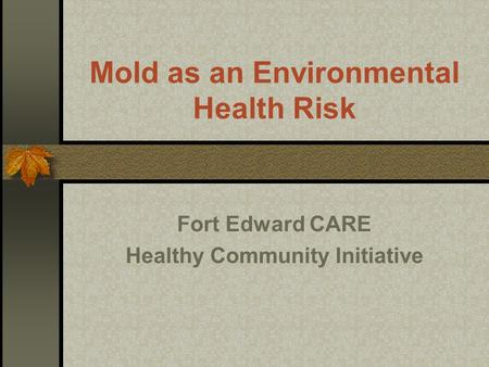 Mold as an Environmental Health Risk Fort Edward CARE Healthy Community Initiative.