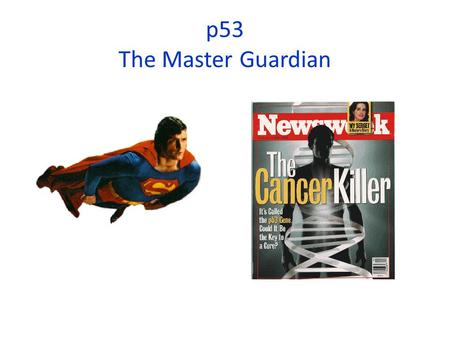 P53 The Master Guardian. R point Cell cycle control involves several checkpoints and checkpoint (molecular breaking) mechanisms.