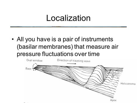 All you have is a pair of instruments (basilar membranes) that measure air pressure fluctuations over time Localization.