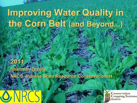 2011 Shannon Zezula NRCS Indiana State Resource Conservationist Improving Water Quality in the Corn Belt (and Beyond...)