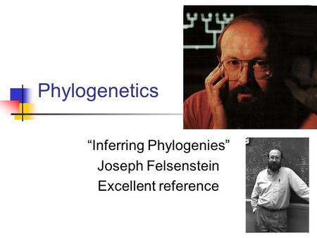 """Inferring Phylogenies"" Joseph Felsenstein Excellent reference"