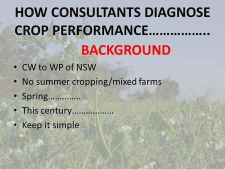 HOW CONSULTANTS DIAGNOSE CROP PERFORMANCE…………….. BACKGROUND CW to WP of NSW No summer cropping/mixed farms Spring………….. This century……………… Keep it simple.