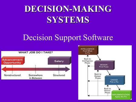 DECISION-MAKING SYSTEMS Decision Support Software.