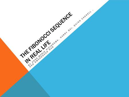 THE FIBONOCCI SEQUENCE IN REAL LIFE BY ANNE-MARIE PIETERSMA, HARRY BUI, QUINN CASHELL, AND KWANGGEUN HAN.