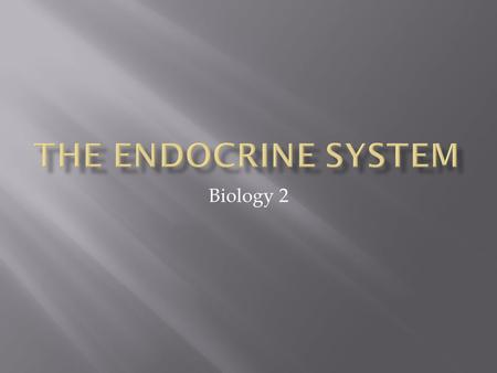 Biology 2.  Nervous system regulates many body activities.  Endocrine system regulates life functions.