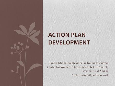 Nontraditional Employment & Training Program Center for Women in Government & Civil Society University at Albany State University of New York ACTION PLAN.