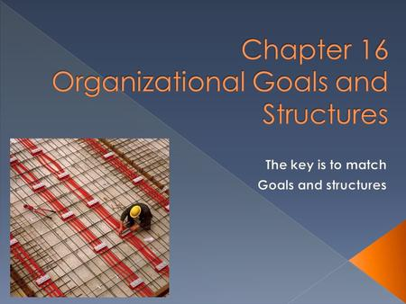 Chapter 16 Organizational Goals and Structures