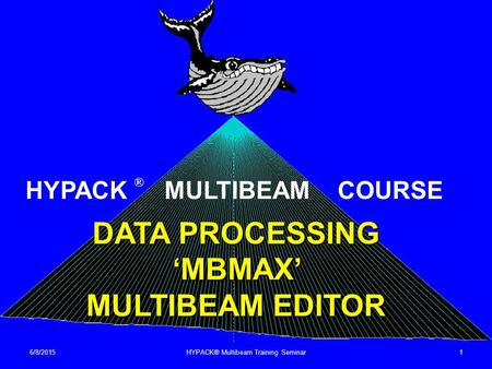 DATA PROCESSING 'MBMAX' MULTIBEAM EDITOR