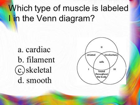 Which type of muscle is labeled I in the Venn diagram? a. cardiac b. filament c. skeletal d. smooth.