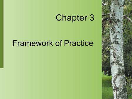 Chapter 3 Framework of Practice.