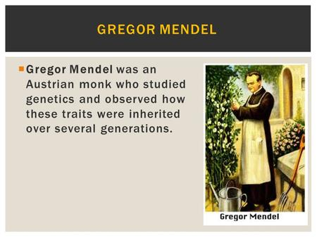 Gregor Mendel Gregor Mendel was an Austrian monk who studied genetics and observed how these traits were inherited over several generations. Great.