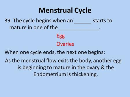 Menstrual Cycle 39. The cycle begins when an ______ starts to mature in one of the ______________. Egg Ovaries When one cycle ends, the next one begins: