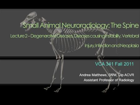 Small Animal Neuroradiology: The Spine Lecture 2 – Degenerative Diseases, Diseases causing Instability, Vertebral Injury, Infection and Neoplasia VCA.