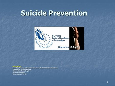 1 Suicide Prevention Developed by: Education, Training, and Dissemination core of the VISN 2 Center of Excellence Canandaigua VA Medical Center Center.