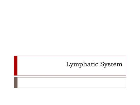 Lymphatic System. WARM UP:  Get a note sheet from the front stool.  We will finish Ch. 16 today.  Next class we will review Ch. 16.  On Thursday the.