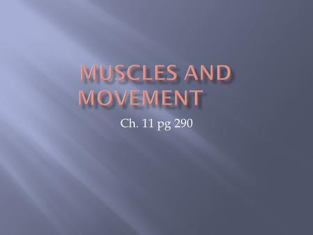 Ch. 11 pg 290. The movement in humans involves bones, ligaments, muscles, tendons and nerves.