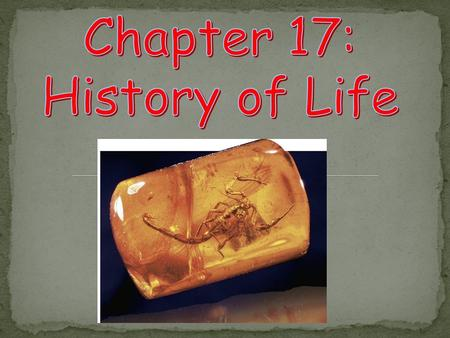 Chapter 17: History of Life.
