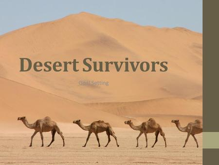 Desert Survivors Goal Setting.