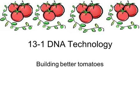 13-1 DNA Technology Building better tomatoes. Objectives Define genetic engineering Explain how restriction enzymes can be used to make recombinant DNA.