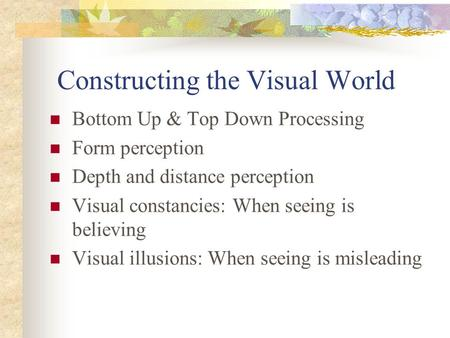 Constructing the Visual World