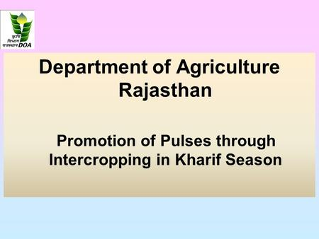 Department of Agriculture Rajasthan Promotion of Pulses through Intercropping in Kharif Season.
