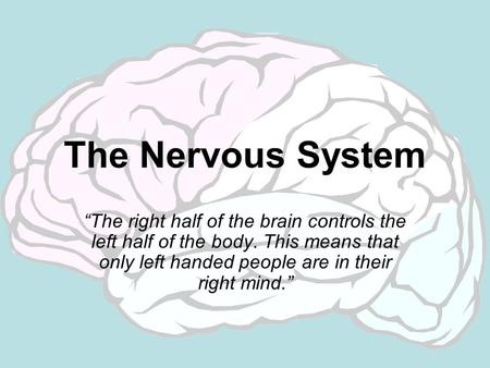 "The Nervous System ""The right half of the brain controls the left half of the body. This means that only left handed people are in their right mind."""