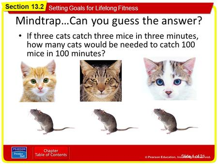 Mindtrap…Can you guess the answer?