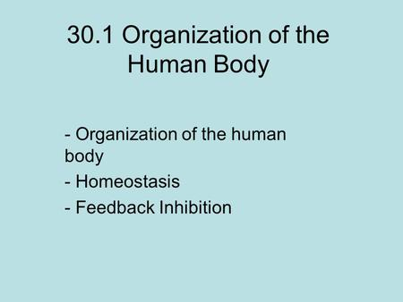 30.1 Organization of the Human Body
