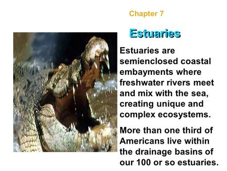 Chapter 7 Estuaries Estuaries are semienclosed coastal embayments where freshwater rivers meet and mix with the sea, creating unique and complex ecosystems.