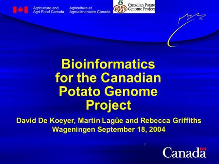 Bioinformatics for the Canadian Potato Genome Project David De Koeyer, Martin Lagüe and Rebecca Griffiths Wageningen September 18, 2004.