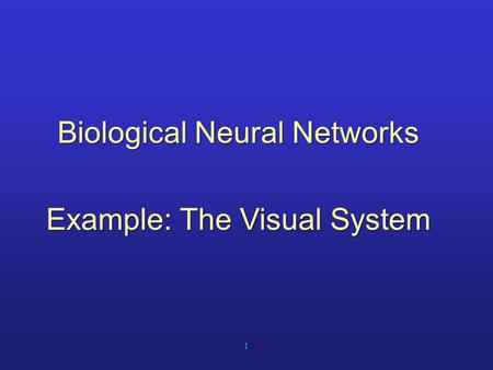 1 Biological Neural Networks Example: The Visual System.