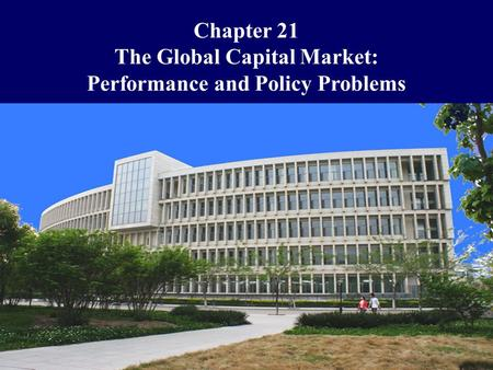 The Global Capital Market: Performance and Policy Problems