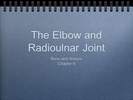 The Elbow and Radioulnar Joint Bone and Actions Chapter 6 Bone and Actions Chapter 6.