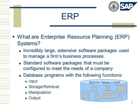 1 ERP  What are Enterprise Resource Planning (ERP) Systems? Incredibly large, extensive software packages used to manage a firm's business processes.