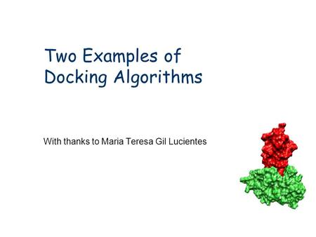 Two Examples of Docking Algorithms With thanks to Maria Teresa Gil Lucientes.