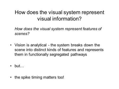 How does the visual system represent visual information? How does the visual system represent features of scenes? Vision is analytical - the system breaks.