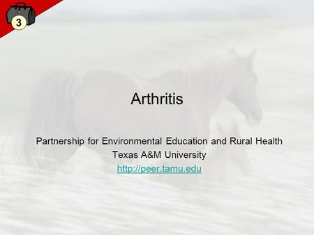 3 Arthritis Partnership for Environmental Education and Rural Health Texas A&M University