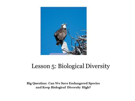 Lesson 5: Biological Diversity Big Question Big Question: Can We Save Endangered Species and Keep Biological Diversity High?