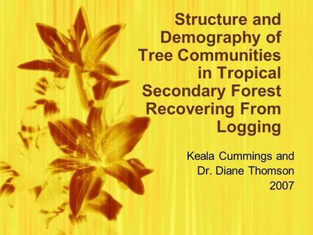 Structure and Demography of Tree Communities in Tropical Secondary Forest Recovering From Logging Keala Cummings and Dr. Diane Thomson 2007 Keala Cummings.