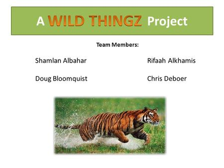 A Project Team Members: Shamlan AlbaharRifaah Alkhamis Doug BloomquistChris Deboer.