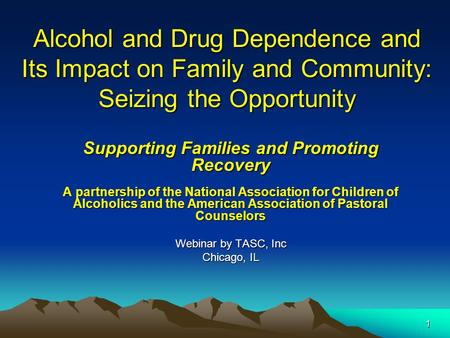1 Alcohol and Drug Dependence and Its Impact on Family and Community: Seizing the Opportunity Supporting Families and Promoting Recovery A partnership.
